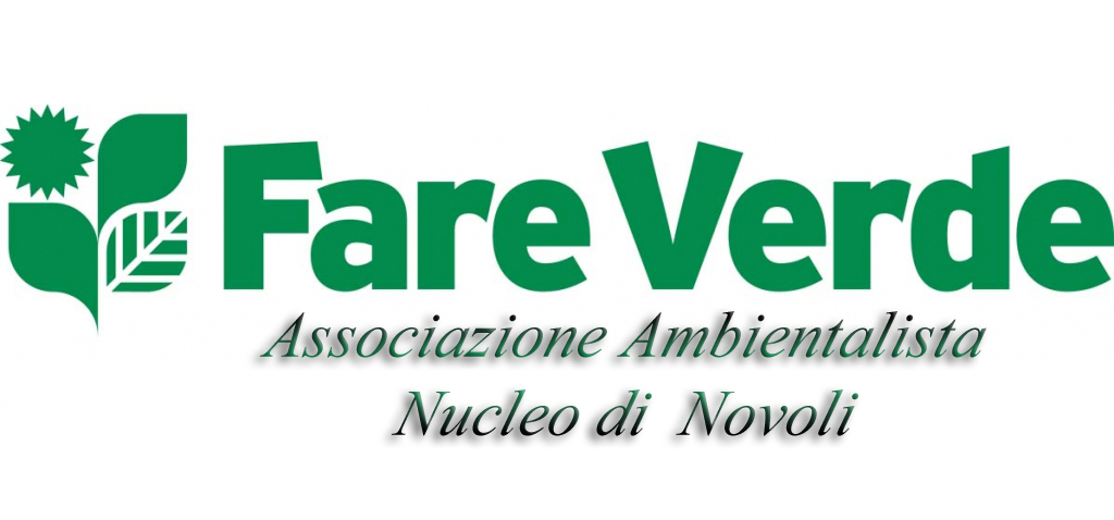 LogoFvVerde