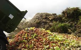 rifiuti agroalimentare