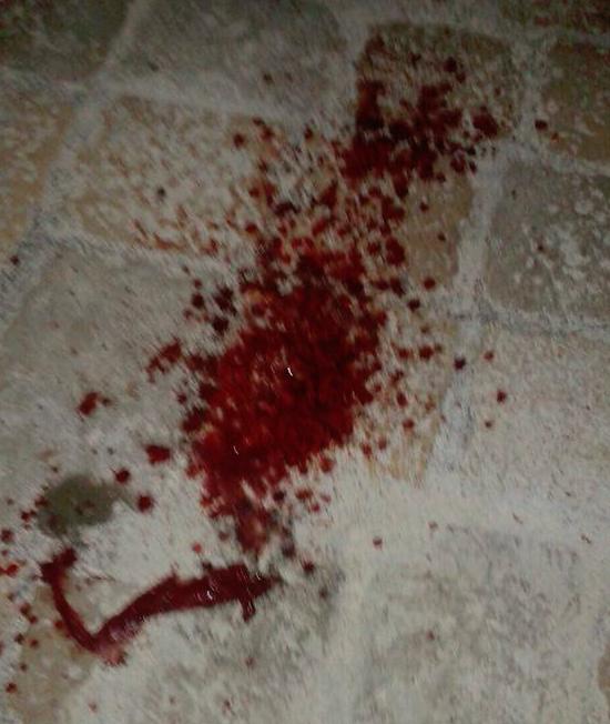 Sangue a Novoli