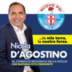 dagostino_300x250